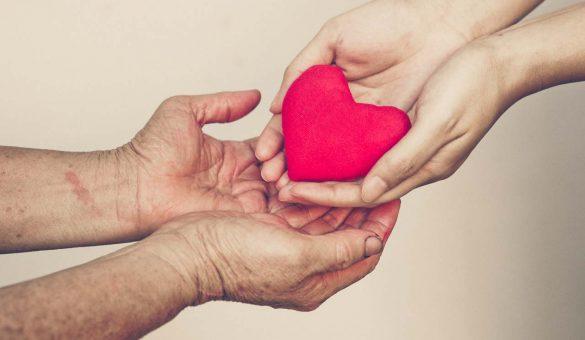 sanar vinculo padres